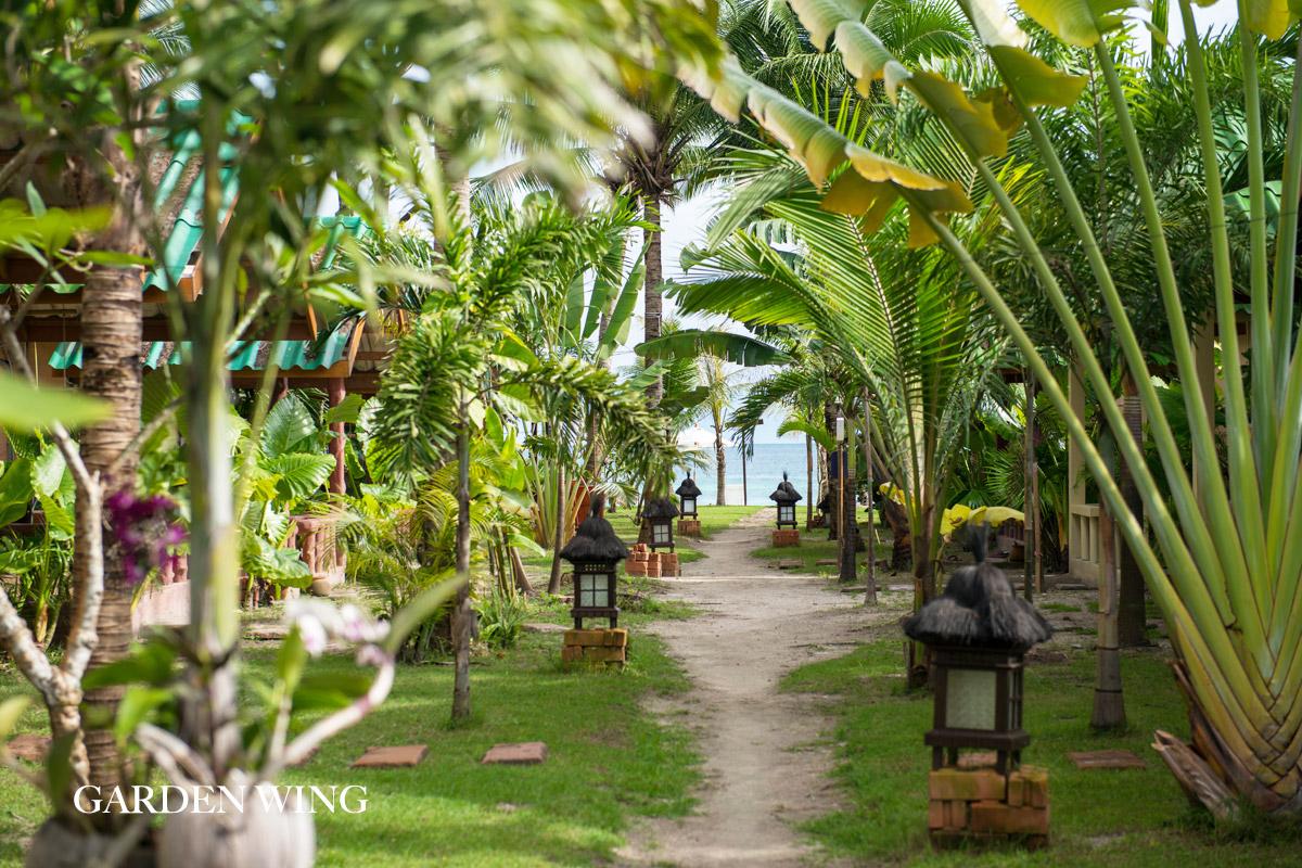 garden wing pathway