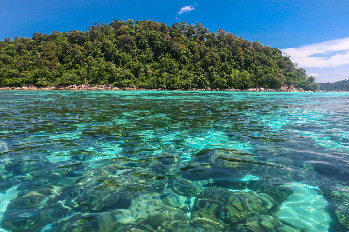 tropical island lipe